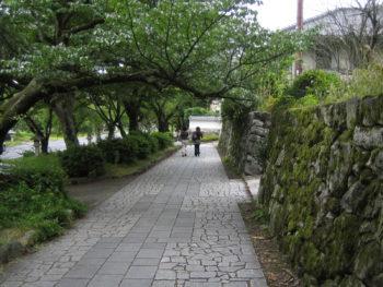 坂本界隈 (7)